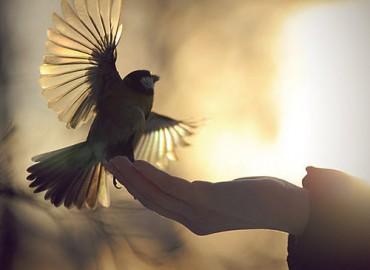 Ar būdami laisvi, iš tiesų, esame laisvi?