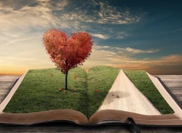 knyga_ir_kelione