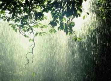 Origeno mintys apie Dievo veikimą ir skirtingą sielos pasirinkimą